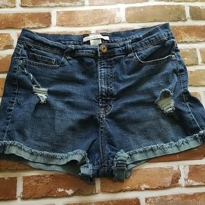 American Rags Distressed Jean Shorts
